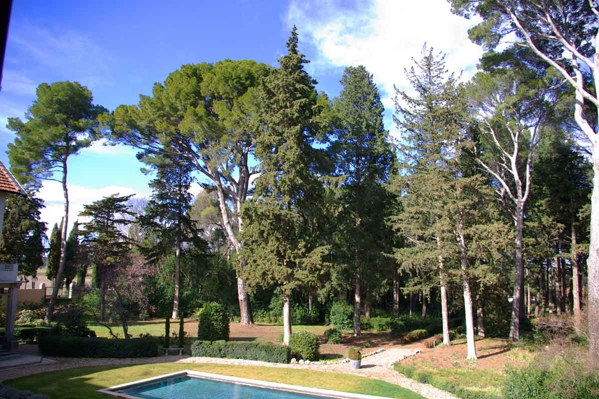 Luxury Holiday Letting Montagnac