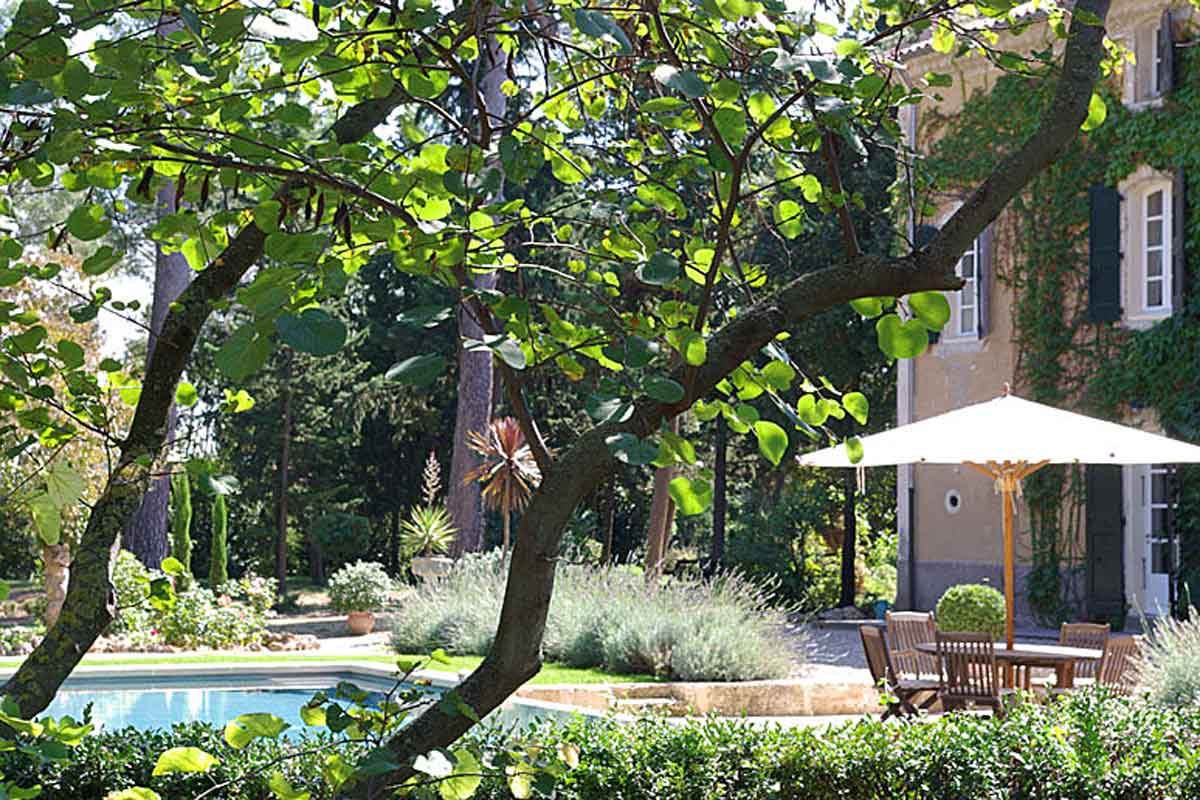 Luxury Holiday Rental near Pezenas 14