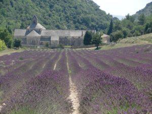 Provence last minute holiday